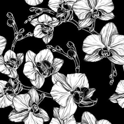 Fotomural Pretas, branca, seamless, Padrão, mão, desenho, orquídea, flor