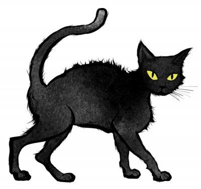 Fotomural Pretas, gato, andar, olhar, câmera