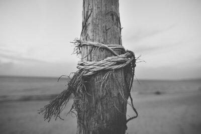 Fotomural Preto, branca, fim, cima, poste, praia, corda, torcido