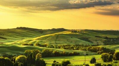 Fotomural Primavera de Toscânia, Rolling Hills no por do sol. Paisagem rural. verde