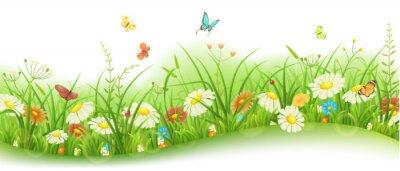 Fotomural Primavera ou verão banner floral com grama verde, flores e borboletas