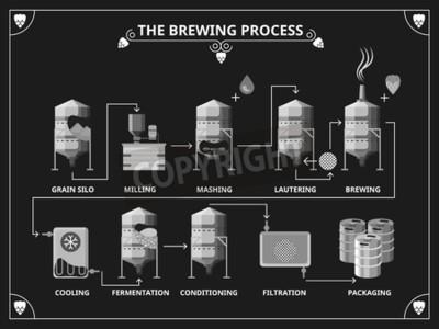 Fotomural Processo de cerveja. Vector a produção de cerveja infographic conjunto. Ordem mashing lautering ilustração do produto