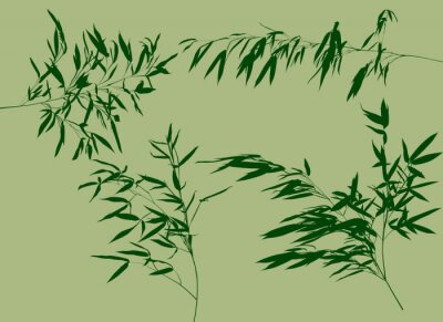Fotomural Quatro ramos de bambu verde definir ilustração