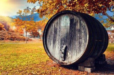 Fotomural Queda, paisagem, antigas, madeira, vinho, barril
