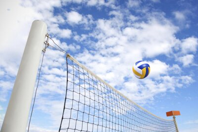 Fotomural rede de voleibol