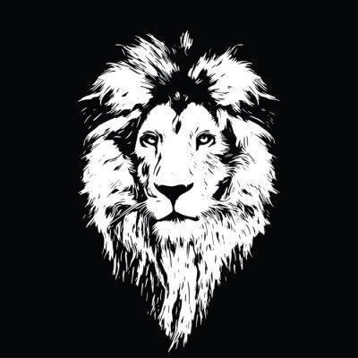 Fotomural Retrato, bonito, leão, leão, escuro