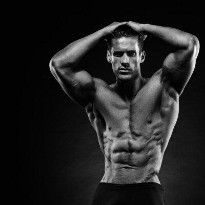 Fotomural Retrato, bonito, musculoso, bodybuilder, levantamento