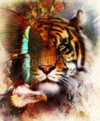 Fotomural Retrato tigre com asas de águia e borboleta .. Fundo abstrato de cor e ornamento, estrutura do vintage. Conceito animal