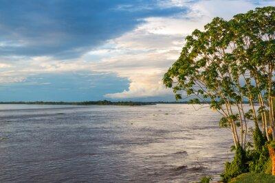 Fotomural Rio Amazonas
