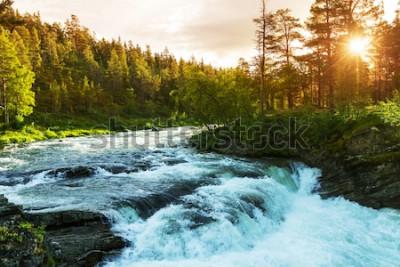 Fotomural Rio na Noruega