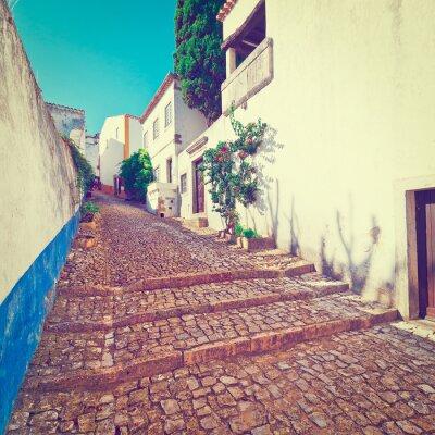 Fotomural Rua
