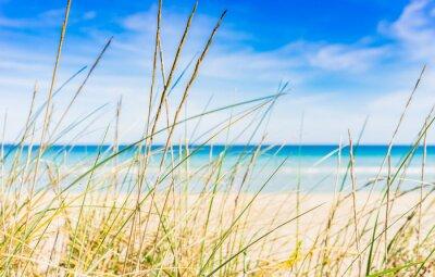 Fotomural ruptura de descanso idílica praia