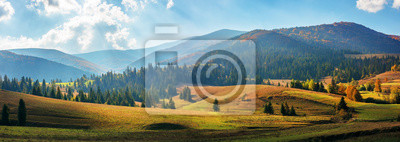 Fotomural rural area of carpathian mountains in autumn. wonderful panorama of borzhava mountains in dappled light observed from podobovets village. agricultural fields on rolling hills near the spruce forest
