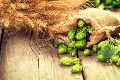 Fotomural Salte nas orelhas do saco e do trigo na tabela velha rachada de madeira. Conceito da cervejaria da cerveja. Ingrediente para a cerveja cerveja. Descrição da foto: Cones do lúpulo fresco-escolhidos da