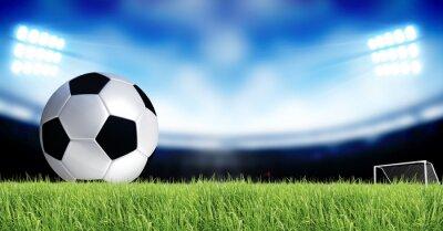 Fotomural Soccer Sport