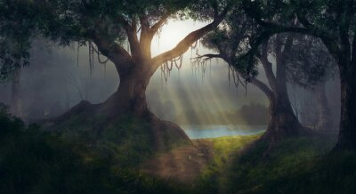 Fotomural Sol, raios, floresta