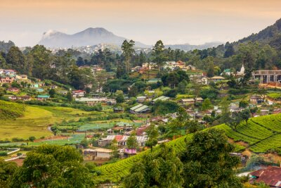 Fotomural Sri Lanka