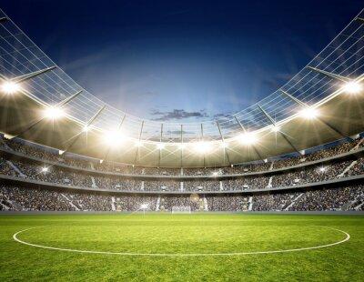 Fotomural Stadion Neutral Mittellinie