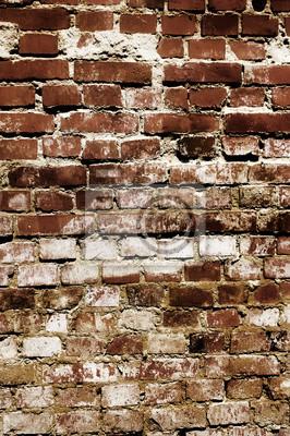 Fotomural Stara betonowa ściana