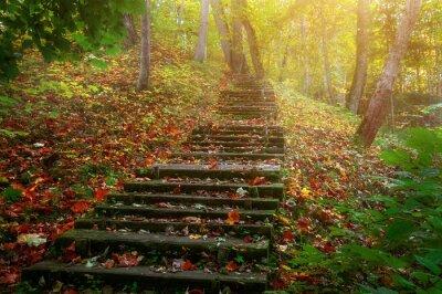 Fotomural Suba as escadas para o sol