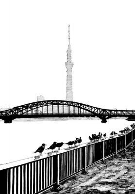 Fotomural Sumida bridge ver mais