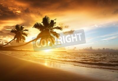 Fotomural sunset on the beach of caribbean sea