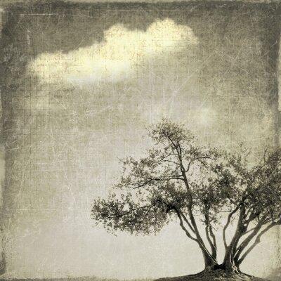 Fotomural Surreal, paisagem, único, árvore, sepia, tons