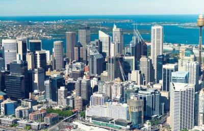 Fotomural Sydney. Vista, pássaro, vista, helicóptero
