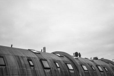 Fotomural telhado redondo