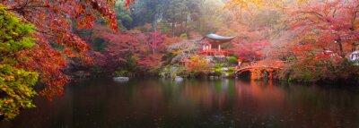 Fotomural Templo de Daigo-ji no outono