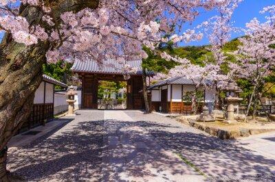 Fotomural Templo em Kyto