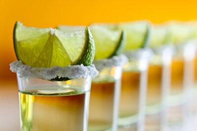 Fotomural tequila, limão e sal