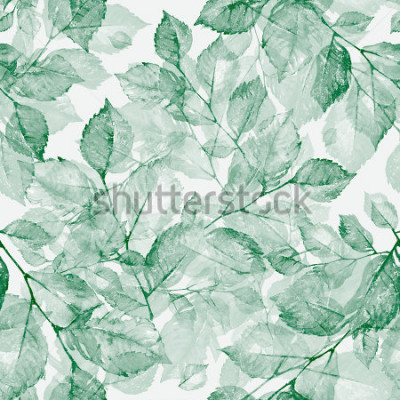 Fotomural Teste padrão sem emenda Z as folhas maravilhosas brilhantes da aquarela Aformada maravilhosa de uma aquarela escrita à mão. Vintage Retro. Em toneladas.