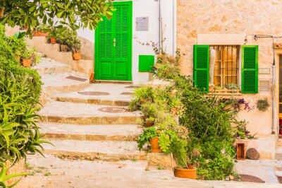 Fotomural Típico, planta, decoração, antigas, rústico, mediterrâneo, vila