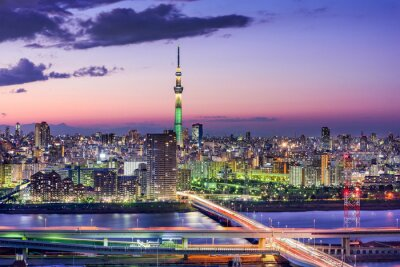 Fotomural Tóquio, Japão Skyline