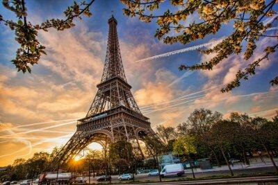 Fotomural Torre Eiffel contra nascer do sol em Paris, França