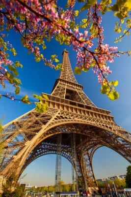 Fotomural Torre Eiffel durante a primavera em Paris, França