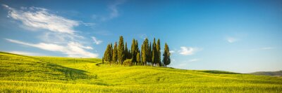 Fotomural Toscana, primavera