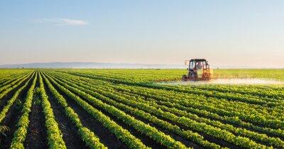 Fotomural Tractor, Pulverização, soja, campo