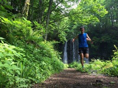 Fotomural TrailRunner no trajeto da floresta