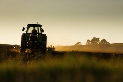 Fotomural Trator que ara o campo no por do sol