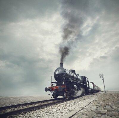 Fotomural trem preto