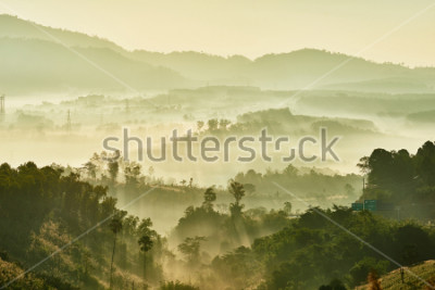 Fotomural Tropical nature landscape mountains forest with slightly fog in morning and sunlight, Thailand.