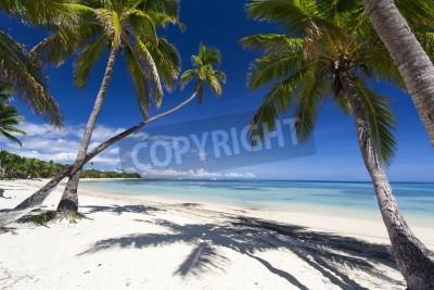 Fotomural Tropical paradise on Fiji island