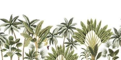 Fotomural Tropical vintage botanical palm trees, banana tree floral seamless border white background. Exotic jungle wallpaper.