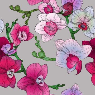 Fotomural Trópico, floral, seamless, padrão, mão, desenho, orquídea, flores