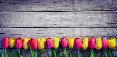 Fotomural Tulips, fila, vindima, prancha, primavera, fundo