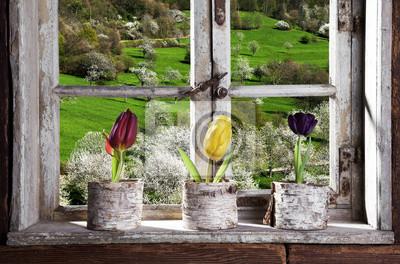 Fotomural Tulpen am Fenster com Blick in die Landschaft