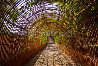 Fotomural Túnel de madeira de cobre em um parque