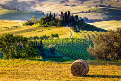 Fotomural Tuscany, Italian Countryside, landscape